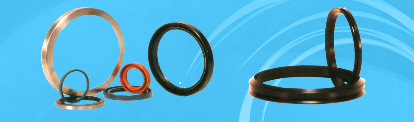 O Rings, Oil Seals, Quad Rings, Back Up Rings, Diaphragms Hydraulic
