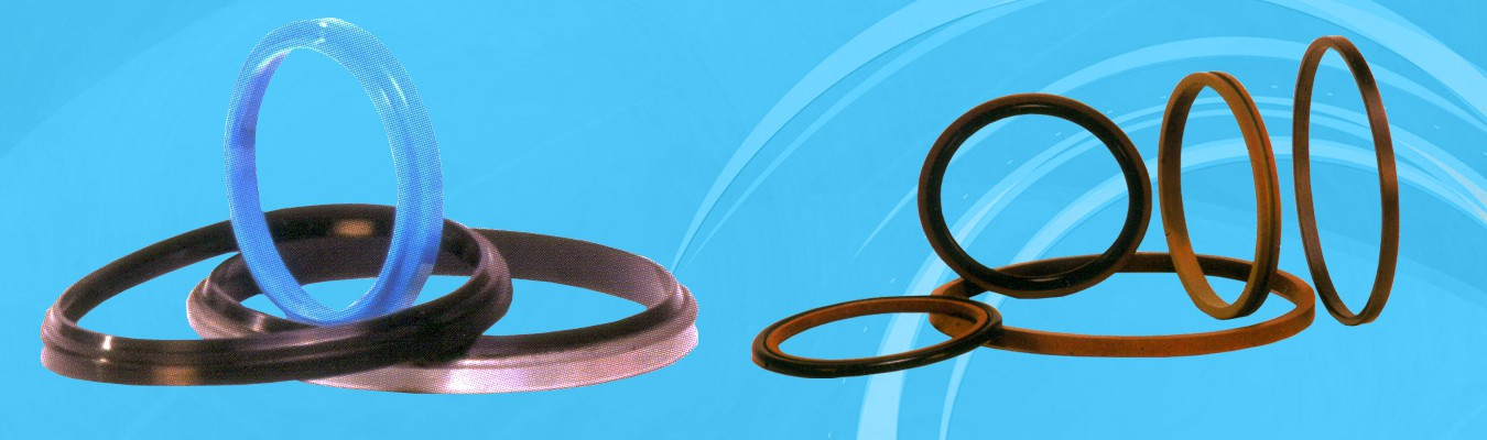 Bucket Washers, Circlips, Gaskets, V Rings, Bonded